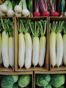 野菜20130817