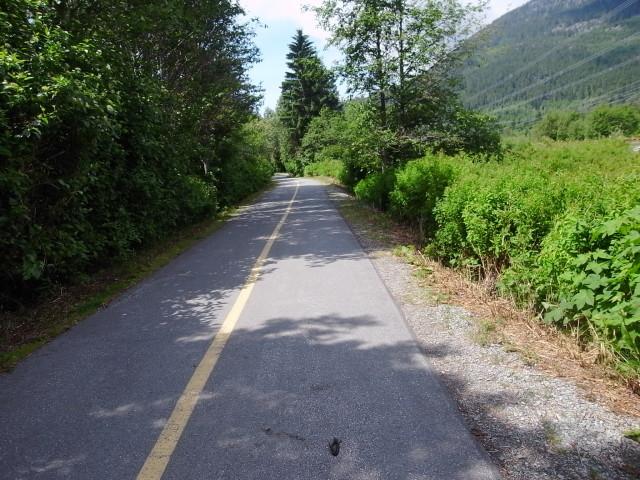 whistlervalleytrail03〜20140626