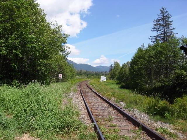 whistlervalleytrail05〜20140626