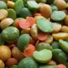 レンズ豆、ひよこ豆、ムング豆の比較とそれぞれの煮方や食べ方