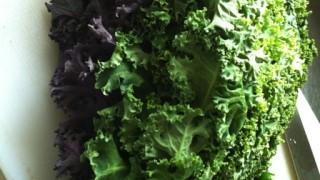 ケールとは?野菜界のスーパーフードの効能を徹底検証