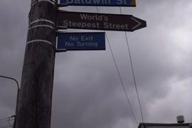 【ダニーデン】世界一急な坂道!ボルドウィンストリートへの行き方!