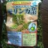 日本が誇るスーパーフード!モリンガとは?