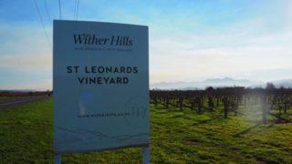 ニュージーランドワインの聖地!マールボロ・ブレナムへの賢い行き方!